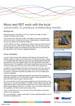India Solar Drip Irrigation.jpg
